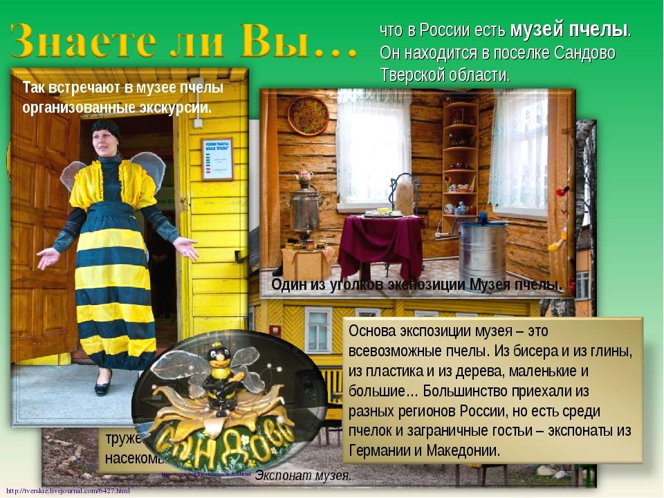 что в России есть музей пчелы. Он находится в поселке Сандово Тверской област...