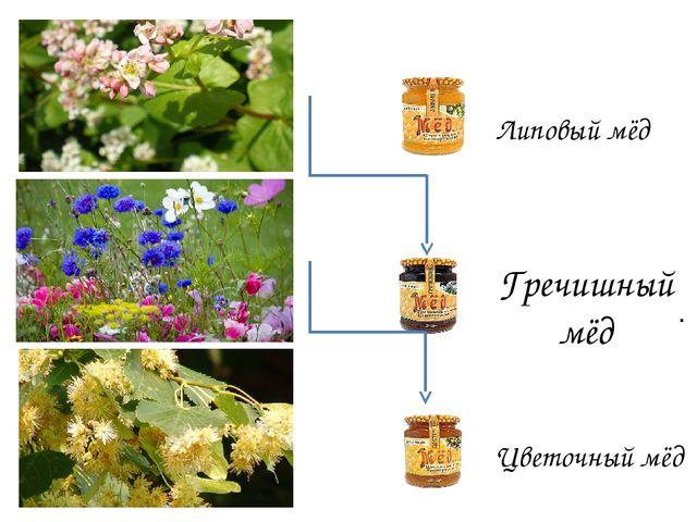 . Липовый мёд Гречишный мёд Цветочный мёд