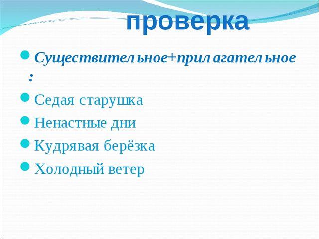 проверка Существительное+прилагательное: Седая старушка Ненастные дни Кудряв...