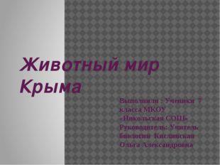 Животный мир Крыма Выполнили : Ученики 7 класса МКОУ «Никольская СОШ» Руковод