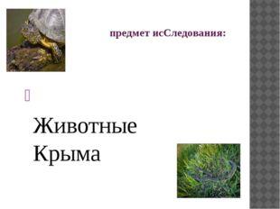 предмет исСледования: Животные Крыма