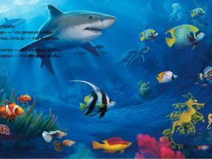«Запомни и повтори!» Ерш, сом, пескарь — это речные рыбы. Камбала, горбуша,