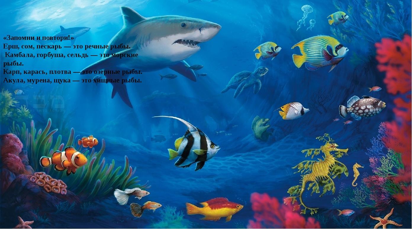 «Запомни и повтори!» Ерш, сом, пескарь — это речные рыбы. Камбала, горбуша,...
