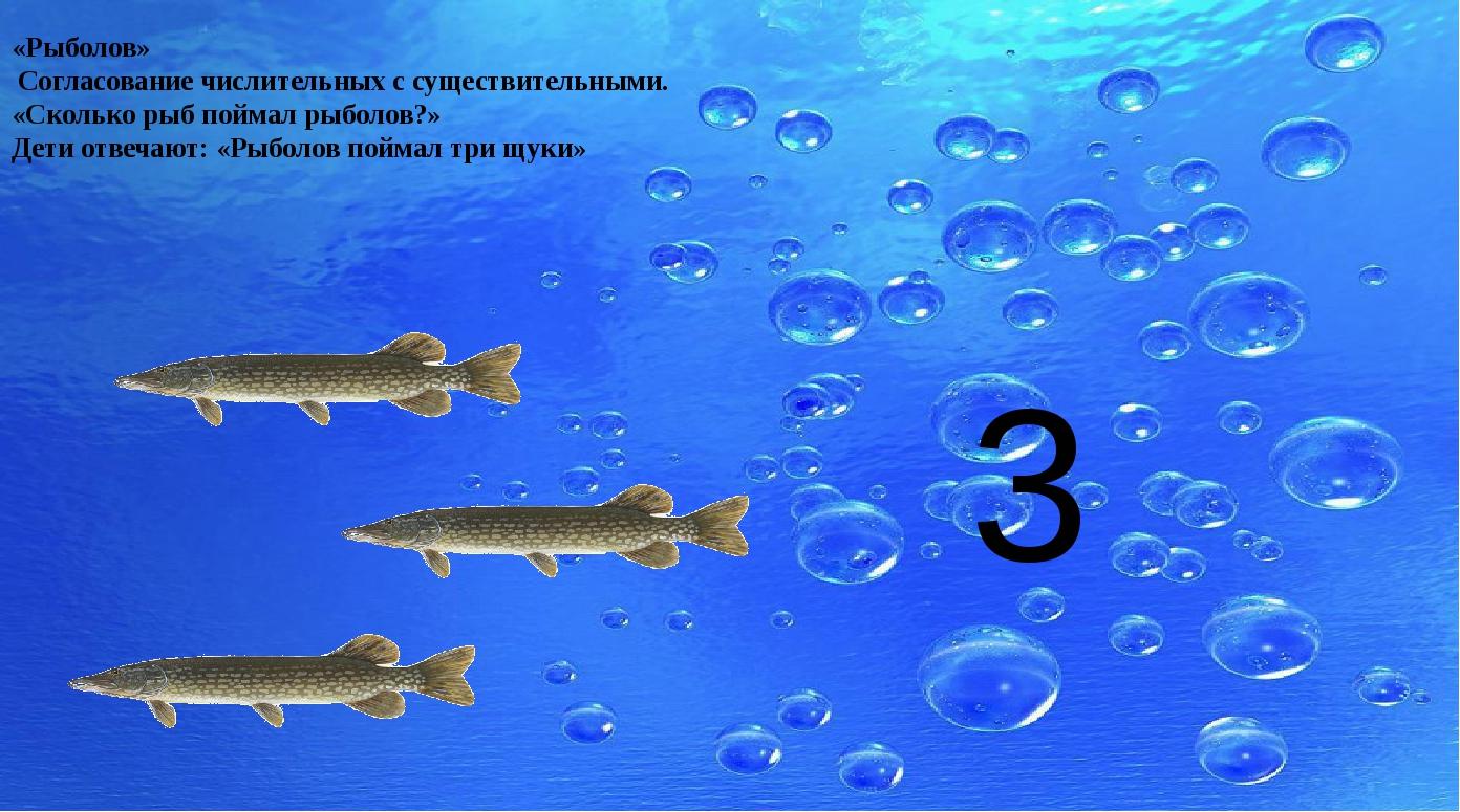 «Рыболов» Согласование числительных с существительными. «Сколько рыб поймал...