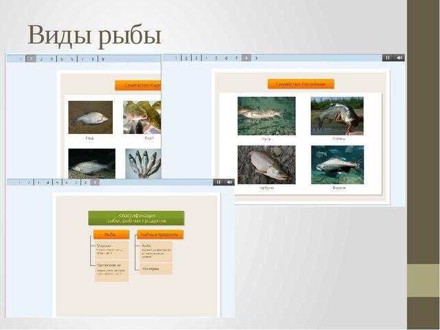 Виды рыбы