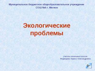 * Экологические проблемы учитель начальных классов Медведева Лариса Александр