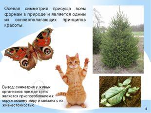 Осевая симметрия присуща всем формам в природе и является одним из основопола