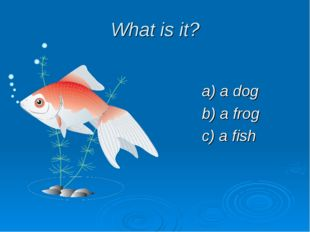 What is it? a) a dog b) a frog c) a fish
