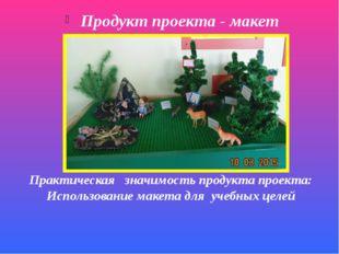 Продукт проекта - макет Практическая значимость продукта проекта: Использован