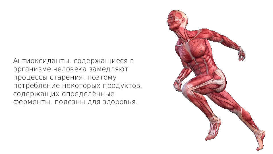 Антиоксиданты, содержащиеся в организме человека замедляют процессы старения,...