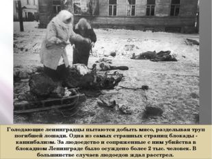 Голодающие ленинградцы пытаются добыть мясо, разделывая труп погибшей лошади.
