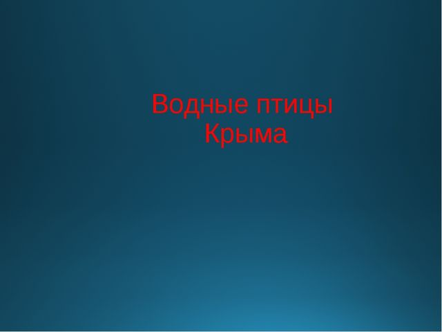 Водные птицы Крыма