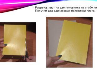 Разрежь лист на две половинке на сгибе листа. Получим два одинаковых половинк