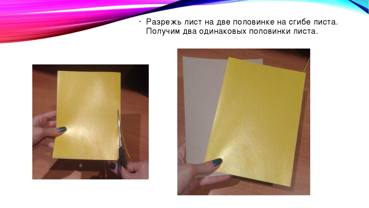 Разрежь лист на две половинке на сгибе листа. Получим два одинаковых половинк...