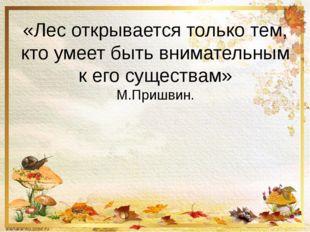 «Лес открывается только тем, кто умеет быть внимательным к его существам» М.П
