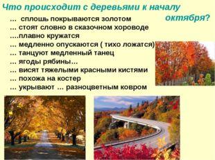 Что происходит с деревьями к началу октября? … сплошь покрываются золотом … с
