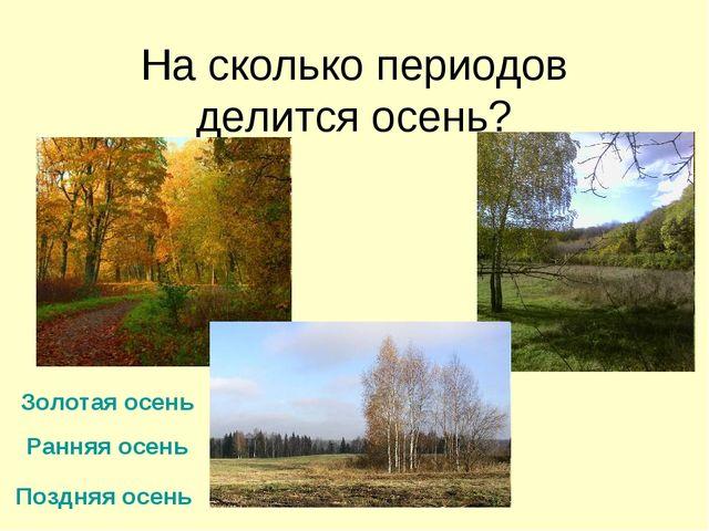 На сколько периодов делится осень? Ранняя осень Золотая осень Поздняя осень