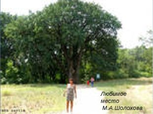Любимое место М.А.Шолохова