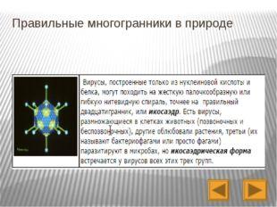 Домашнее задание: Гл. III, п. 35- 37; практическое задание- сделать модели п