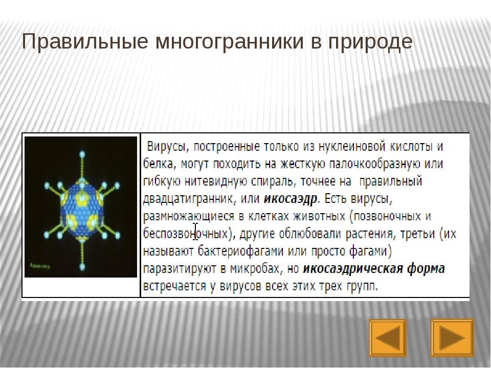 Домашнее задание: Гл. III, п. 35- 37; практическое задание- сделать модели п...