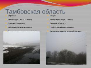 Тамбовская область 29февраля Температура-7.00(-4) 15.00(+3) Давление-760мм.рт