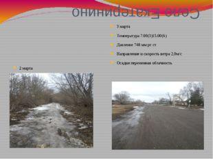 Село Екатеринино 2 марта Температура 7.00(2)15.00(5) Давление 750мм рт ст Нап