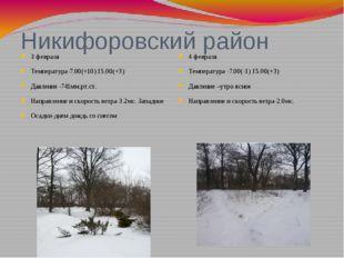 Никифоровский район 3 февраля Температура-7.00(+10) 15.00(+3) Давление -741мм