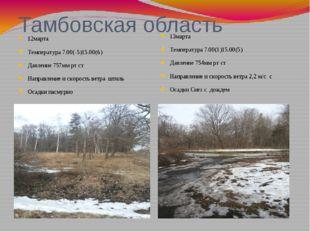 Тамбовская область 12марта Температура 7.00(-5)15.00(6) Давление 757мм рт ст