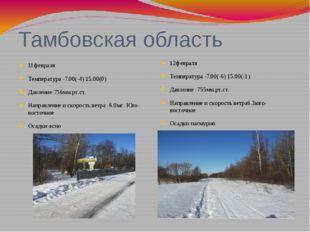 Тамбовская область 11февраля Температура -7.00(-4) 15.00(0) Давление-756мм.рт