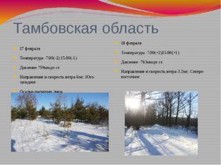 Тамбовская область 17 февраля Температура -7.00(-2) 15.00(-1) Давление 759мм.