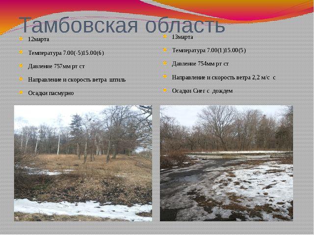 Тамбовская область 12марта Температура 7.00(-5)15.00(6) Давление 757мм рт ст...