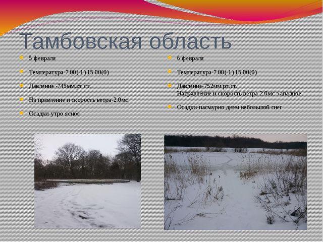 Тамбовская область 5 февраля Температура-7.00(-1) 15.00(0) Давление -745мм.рт...