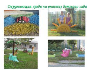 Окружающая среда на участке детского сада