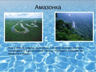 Амазонка Река в Южной Америке, крупнейшая в мире по размерам бассейна, полнов