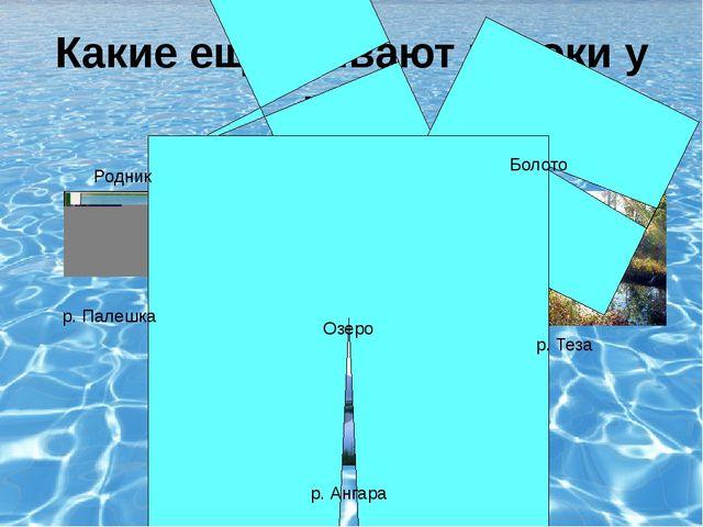 Какие ещё бывают истоки у рек? р. Ангара Озеро Родник р. Палешка р. Теза Болото