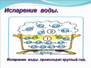 Испарение воды. Испарение воды происходит круглый год.