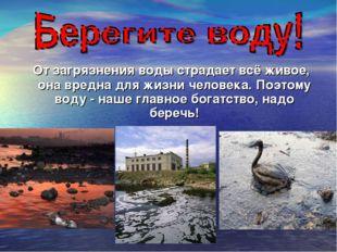 От загрязнения воды страдает всё живое, она вредна для жизни человека. Поэто