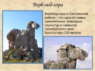 Верблюд-гора в Светлинском районе – это одна из самых оригинальных природных