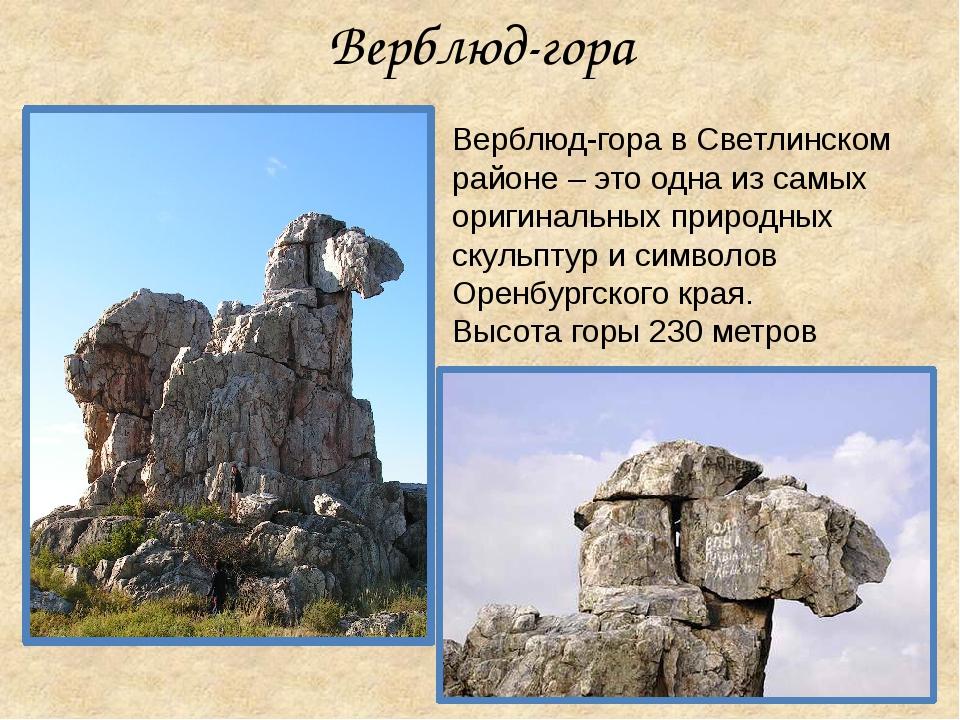 Верблюд-гора в Светлинском районе – это одна из самых оригинальных природных...
