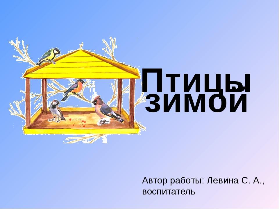 Автор работы: Левина С. А., воспитатель Птицы зимой