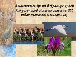 В настоящее время в Красную книгу Астраханской области занесены 330 видов рас