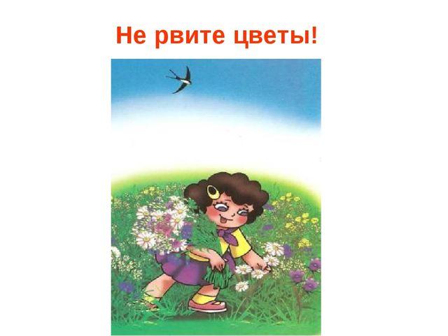 Не рвите цветы!