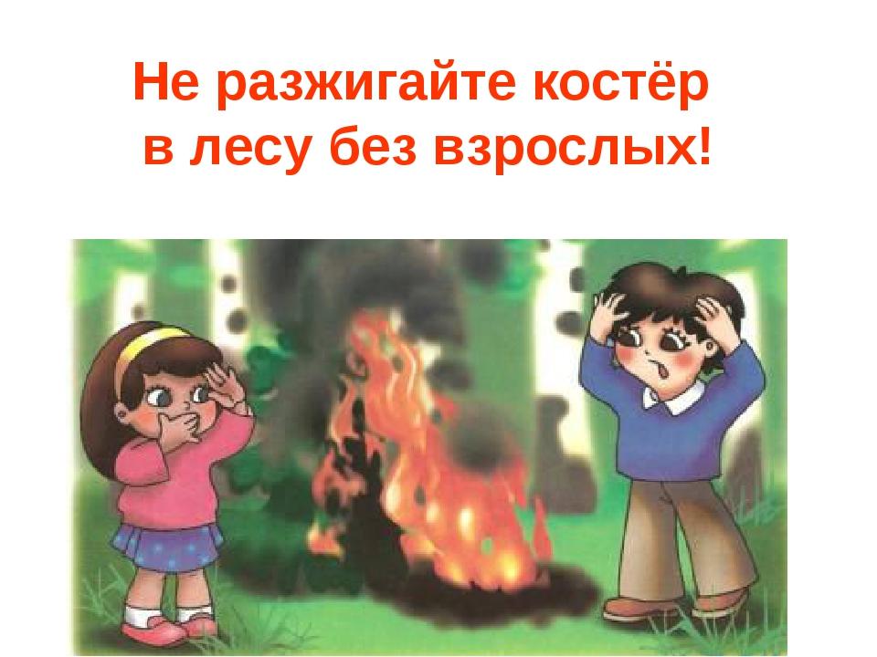 не разжигай костры в лесу картинки