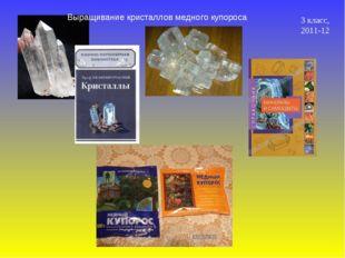 Выращивание кристаллов медного купороса 3 класс, 2011-12