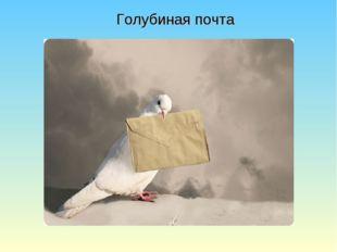Голубиная почта
