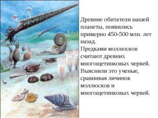 Древние обитатели нашей планеты, появились примерно 450-500 млн. лет назад. П