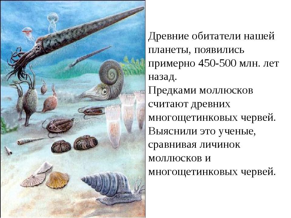 Древние обитатели нашей планеты, появились примерно 450-500 млн. лет назад. П...