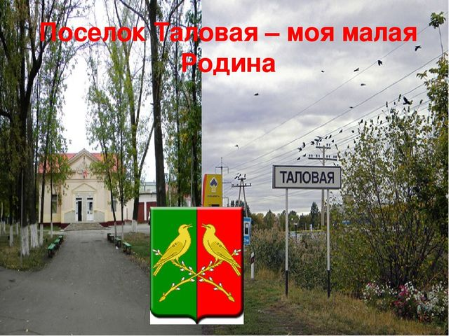 Поселок Таловая – моя малая Родина