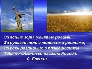 За ясные зори, умытые росами, За русское поле с колосьями рослыми, За реки ра