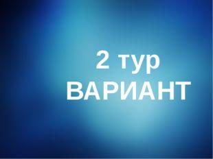 2 тур ВАРИАНТ